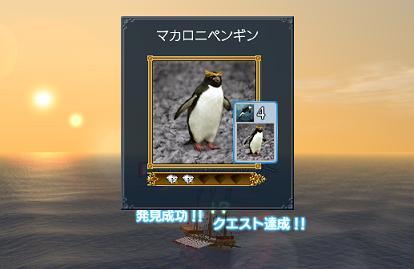 2007.12.10マカロニペンギン発見♪かわいい〜(*^。^*)